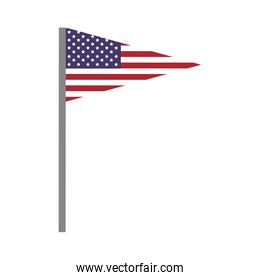 Pennant and flag icon. USA design. Vector graphic