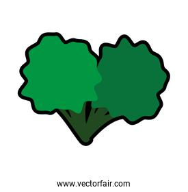 Broccoli icon. Healthy and Organic food. Vector graphic