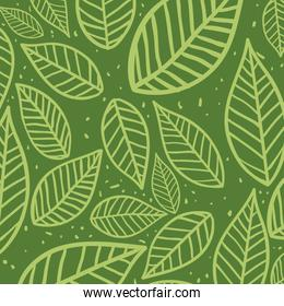 Leaves background. Nature design. Vector graphic