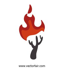 Dry tree on fire icon. Natural disaster design. Vector graphic