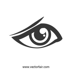 Sad eye icon. View and look design. Vector graphic