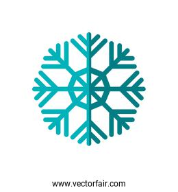 Snowflake winter cold  icon. Vector graphic
