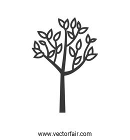 tree leaf plant nature ecology icon. Vector graphic