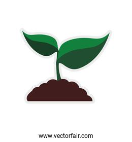 leaf earth plant green nature ecology icon. Vector graphic
