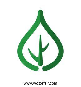 green leaf nature organic plant icon. Vector graphic