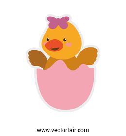 Duck cute animal little icon. Vector graphic