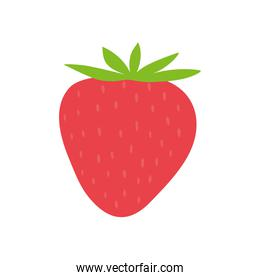 strawberry red fruit organic food icon. Vector graphic