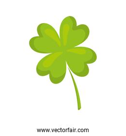 clover plant leaf lucky icon. Vector graphic