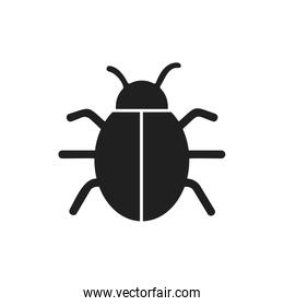 bug insect infection parasite icon. Vector graphic