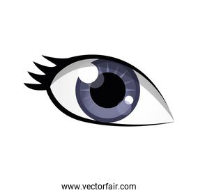 eye female look vision optical  icon. Vector graphic