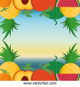 Fruits frame and summer concept