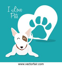 i love pets heart poster