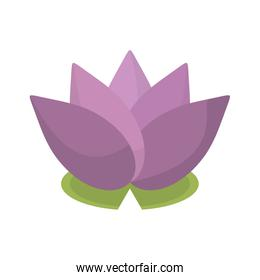 spa flower lotus isolated icon