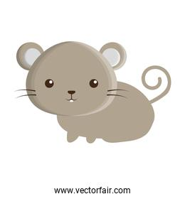 cute mouse isolated icon