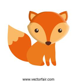 cute fox isolated icon