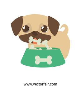 dog little tongue out bowl food b print
