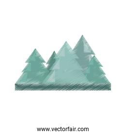 drawing pine tree travel landscape nature