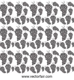 bunch grapes seamless pattern design