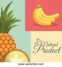 fruit nutrition natural product poster