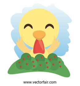 cute rooster animal winking