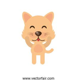 cute wolf animal character funny