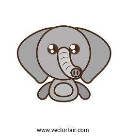 elephant baby animal kawaii design