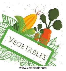 vegetables fresh healthy nutrition poster