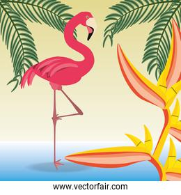 beautiful exotic flamingo with palms and heliconia tropical flowers