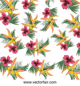 tropical concept with beautiful and colorful flowers pattern