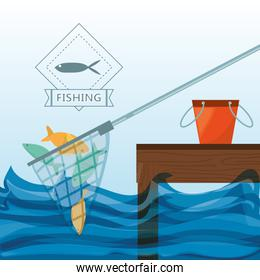 net with fish and bucket