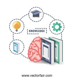 brain and books with knowledge learn and idea