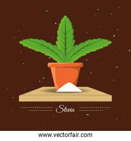 stevia natural sweetener plant and organic product