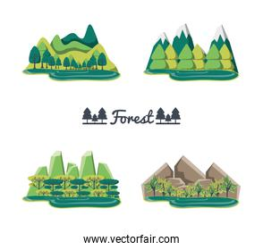 set of natural forest landscapes