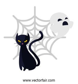 halloween black cat with ghost and spiderweb