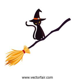 halloween black cat with witch broom
