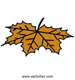 dry leaves design