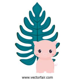 Cute animals and tropical leaves design vector illustration