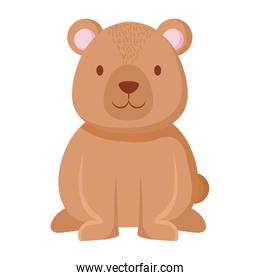 cute bear teddy character