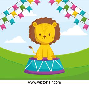 cute circus lion in stage