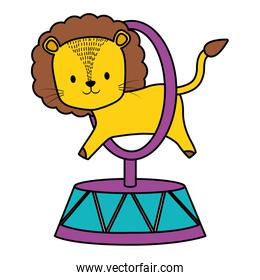 cute circus lion jumping ring