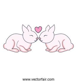 cute and little rabbits couple