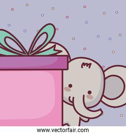 cute and little elephant with gift
