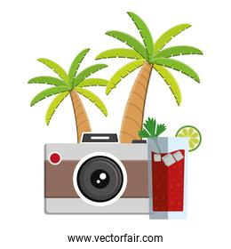trees palms beach scene with cocktail and camera
