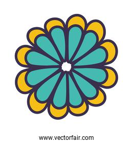 color flower blossom flat vector