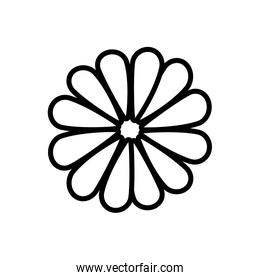 Flower blossom flat icon