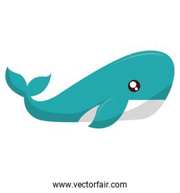 whale icon image