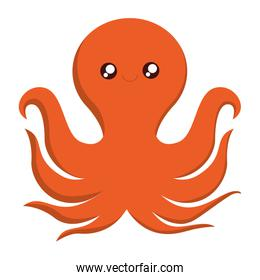 octopus icon image