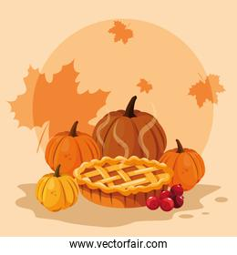 pumpkins for thanksgiving day with pie