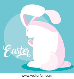 cute rabbit of easter character