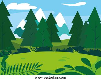 sunny landscape with pines trees scene natural
